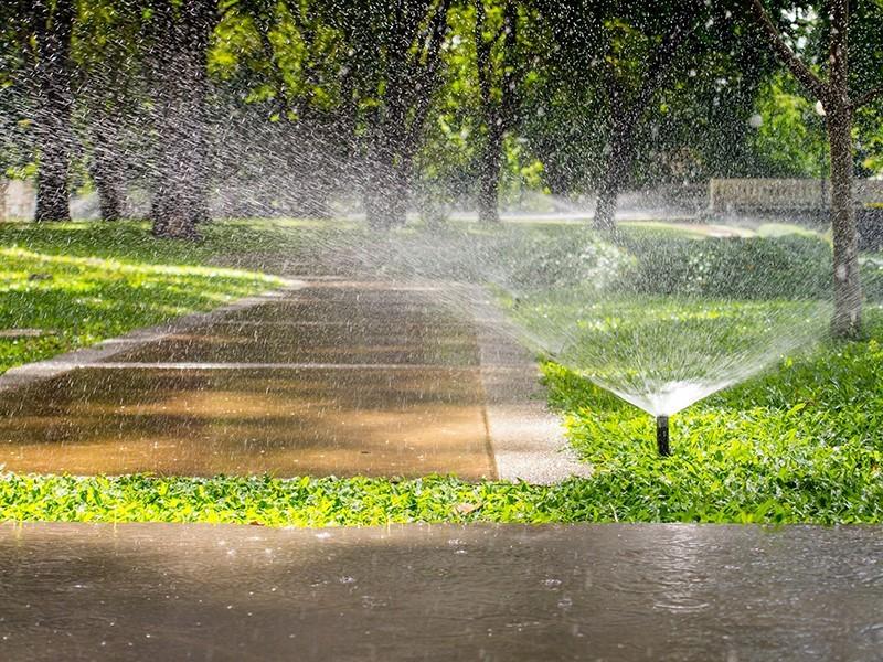 Palm Harbor Sprinkler System INstallation