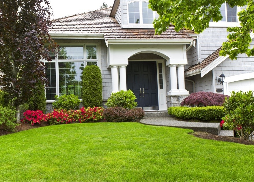 How Much Water Does Your Florida Lawn Need in Winter