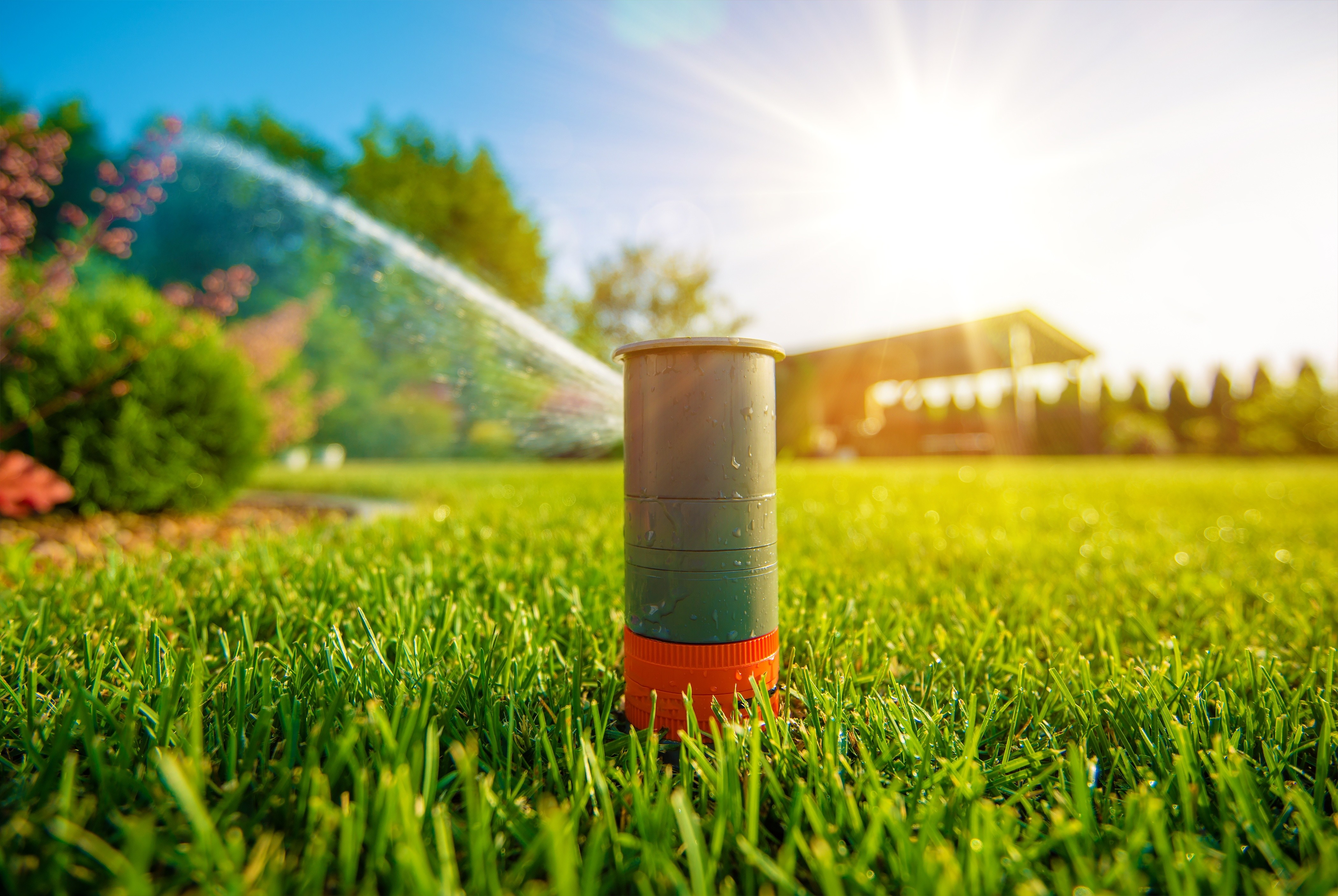 What Irrigation System Upgrades Are Best for Your Lawn