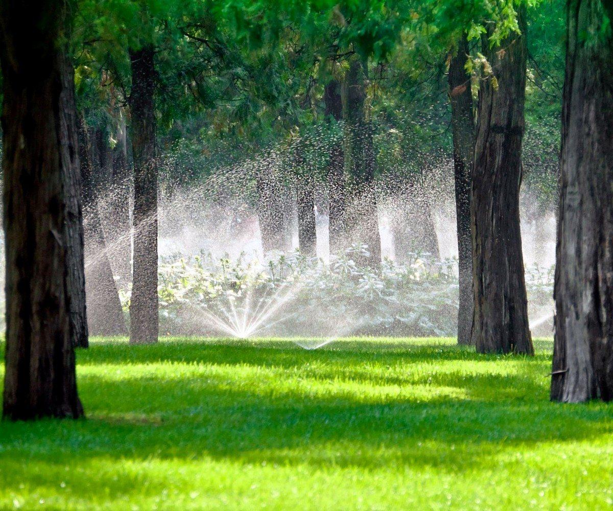 The Ultimate Sprinkler Head Buying Guide