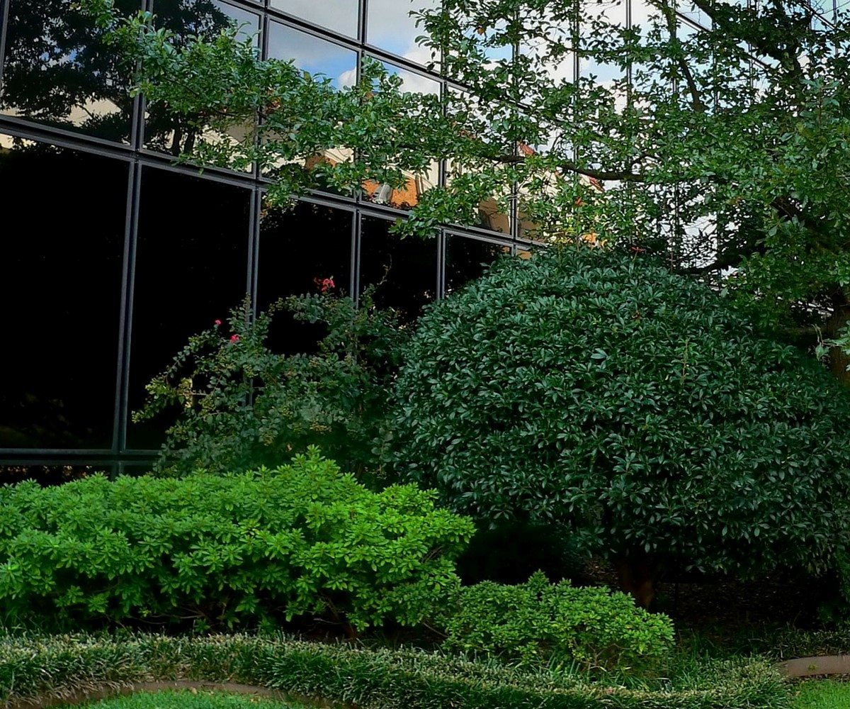 Commercial Sprinkler System Maintenance