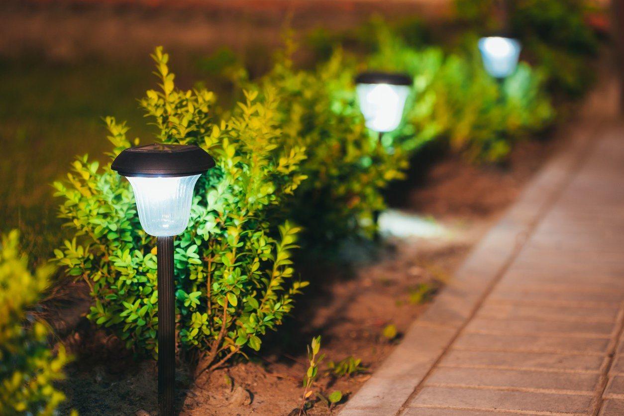 Palm Harbor Landscape Lighting Company