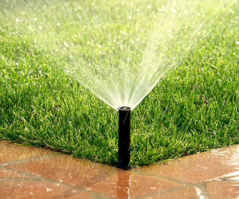 Important Facts When Choosing an Irrigation System | Sunrise
