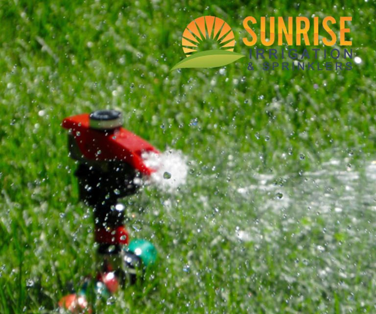 Why You Should Hire Sprinkler System Professionals