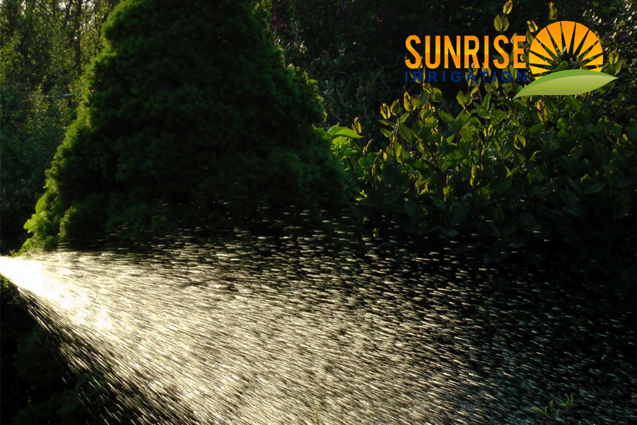 commercial-landscaping-clearwater-2