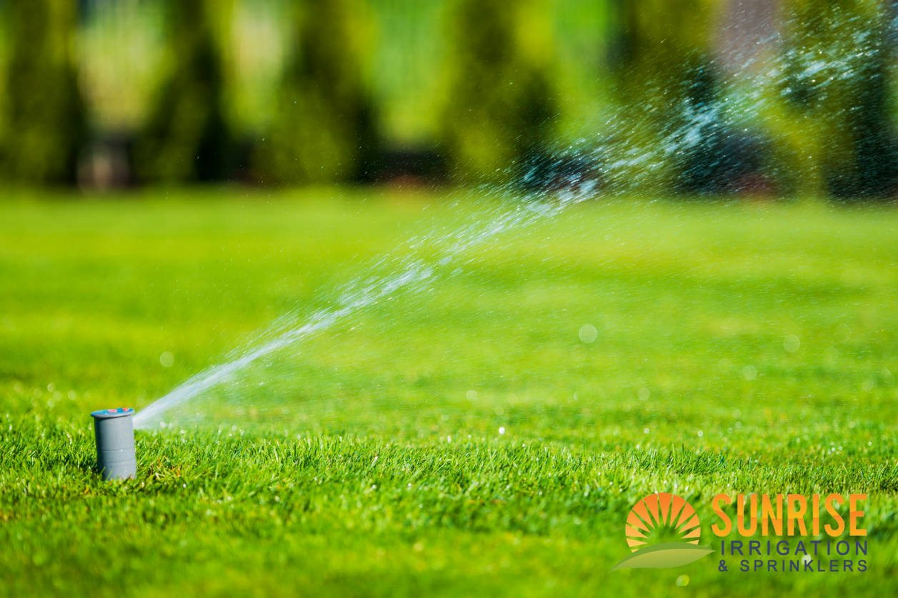 Why Commercial Irrigation is Vital to Your Business' Curb Appeal