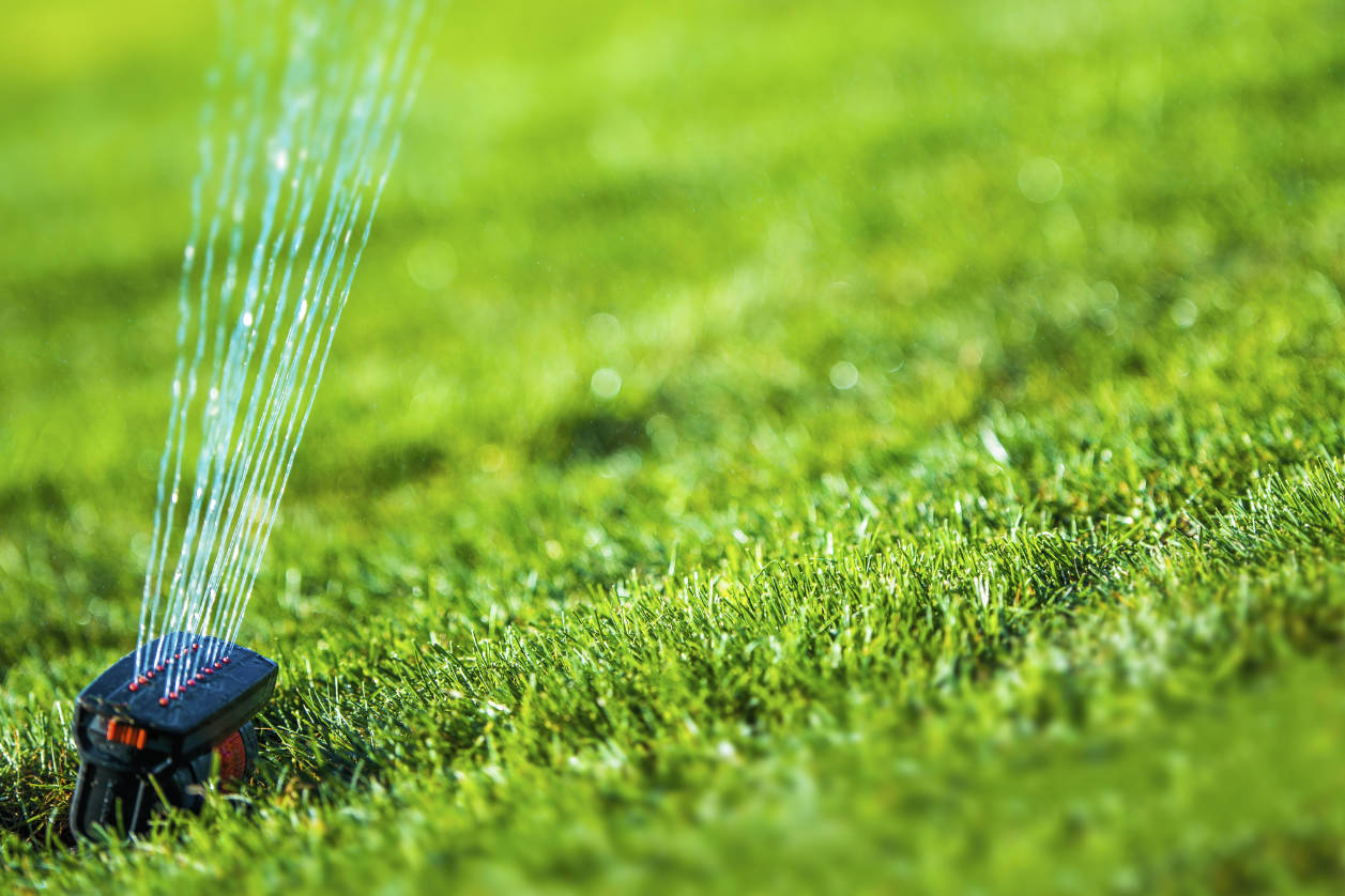 Save Water During the Summer With Your Sprinkler System
