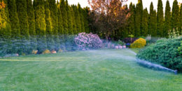 Do you want your irrigation and sprinkler system installed property with a warranty? Then make sure you look for a quality irrigation and sprinkler company in Tampa Bay who is […]
