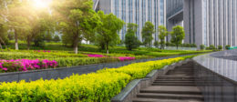 Look around at the beautiful commercial landscaping and lawns all over Tampa Bay. Did you ever stop and think what type of water they are using for their irrigation to […]
