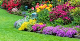 Do you have a passion for gardening? Or, have you installed a beautiful colorful bed of plants and flowers around the perimeter of your home and it needs special attention […]