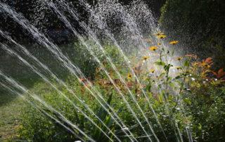 Irrigation Water Conservation