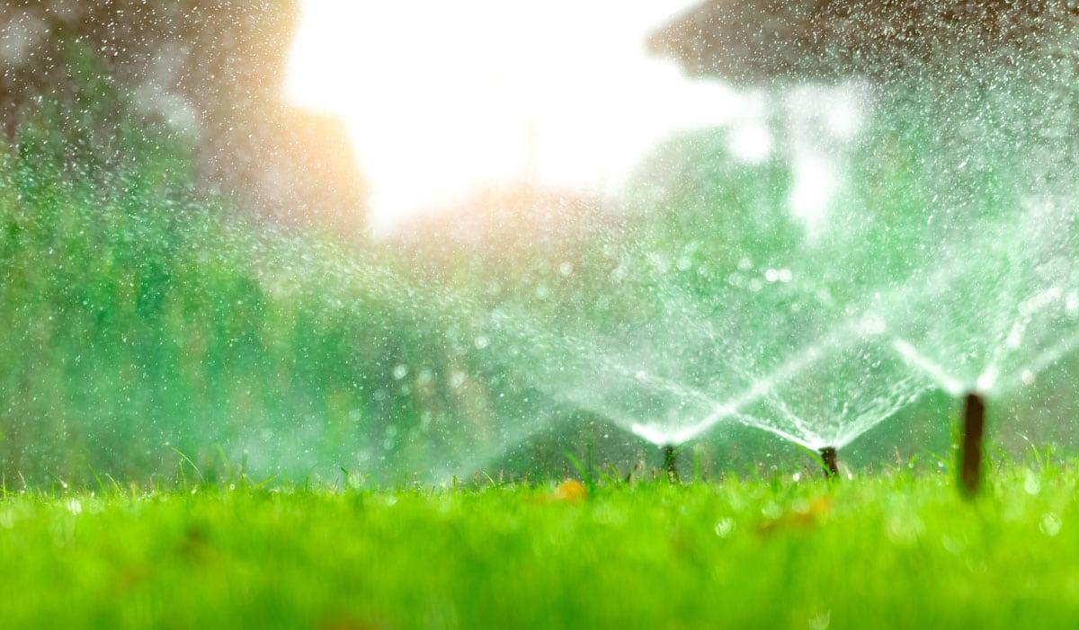Reclaimed Watering Schedule