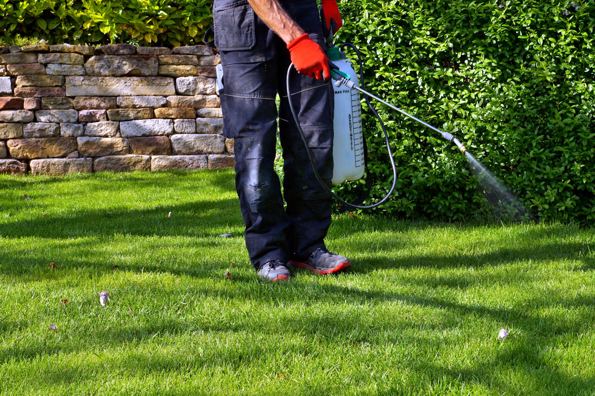 Watering Day Exclusions