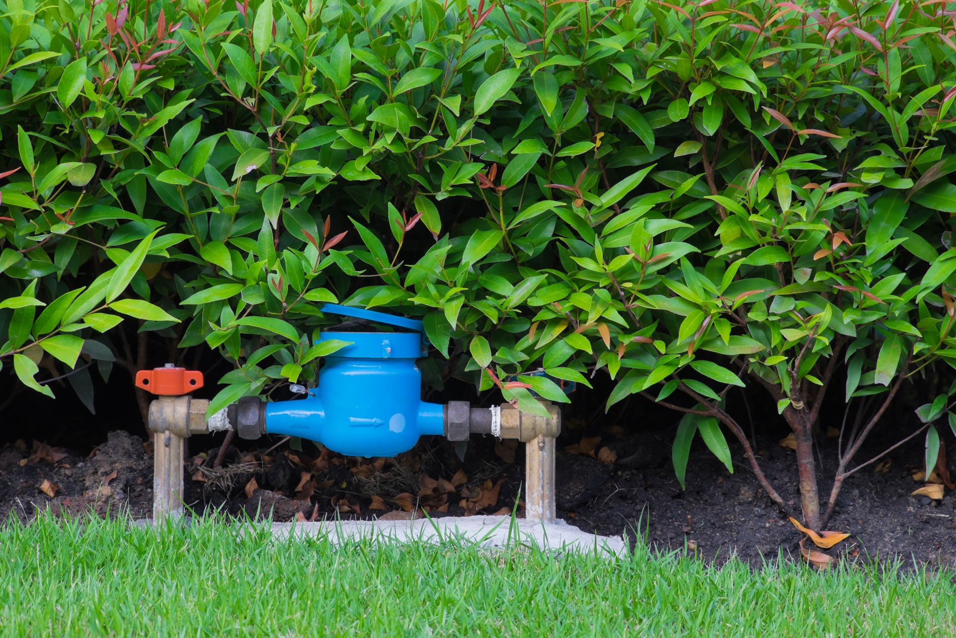 Save Money with Reclaimed Water
