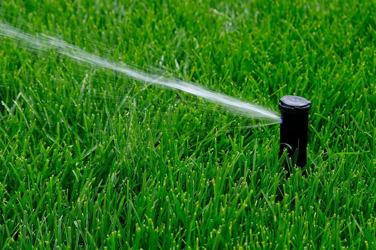 Irrigation Installation Clearwater