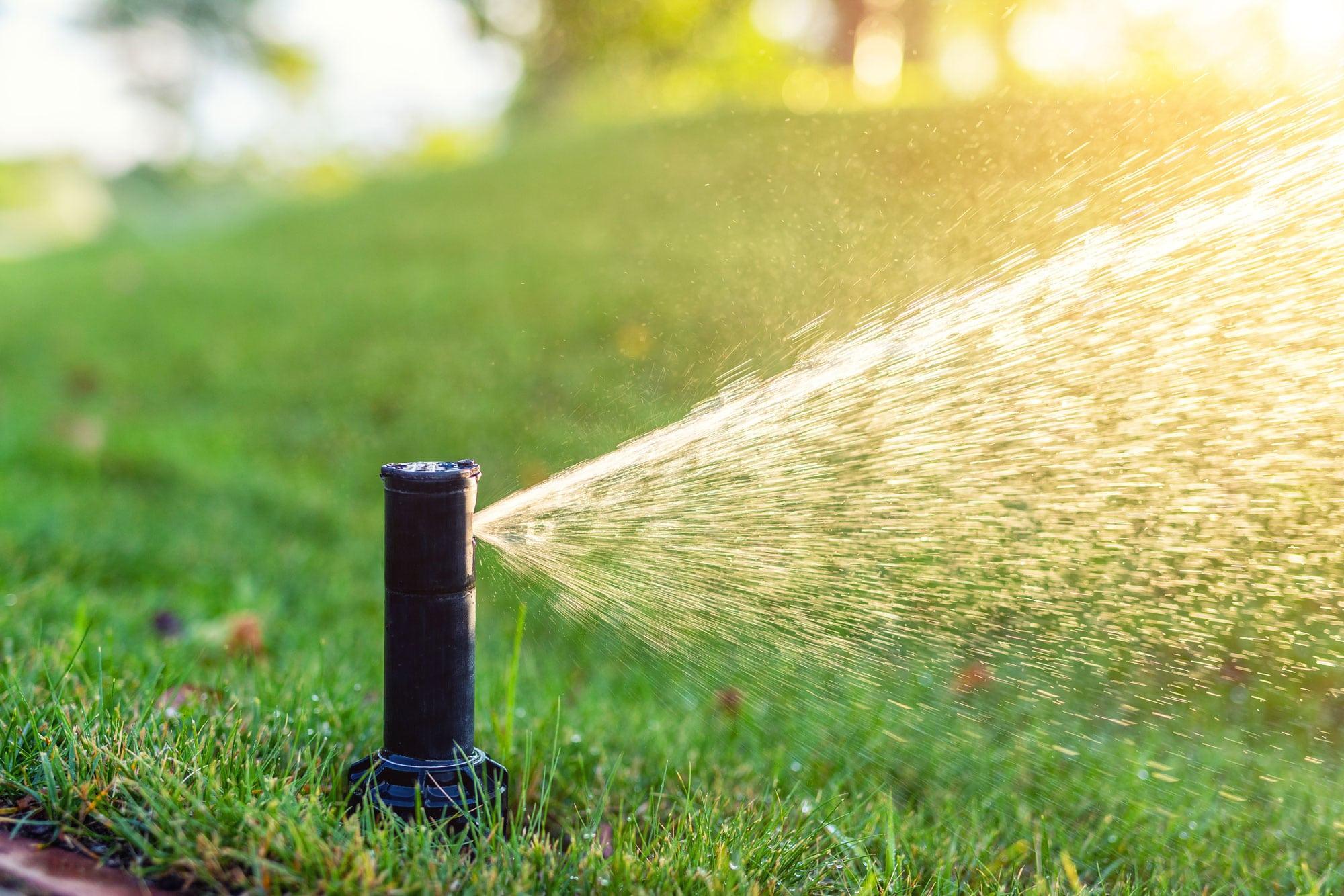 Sprinkler Repair Tampa